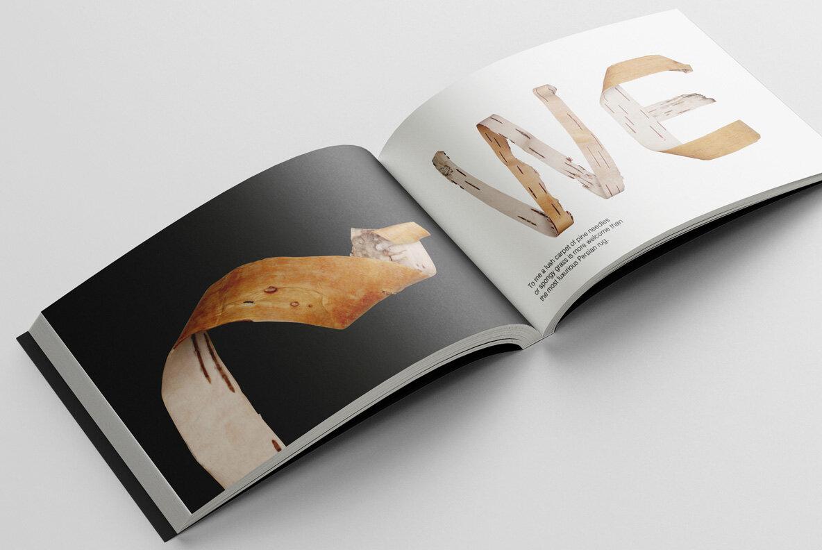 Birch Bark SVG Font