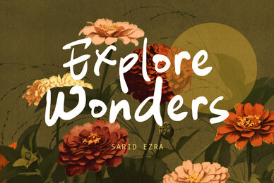 Explore Wonders
