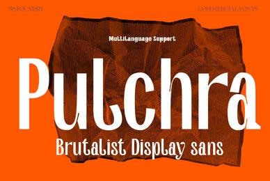 Pulchra SPF