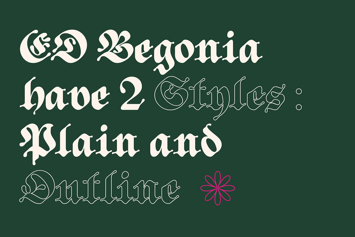 ED Begonia
