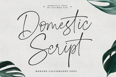 Domestic Script