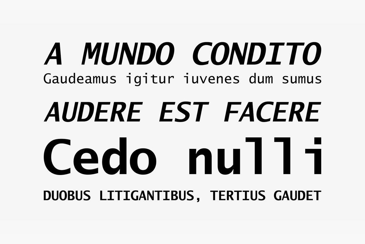 Lucida Sans Typewriter
