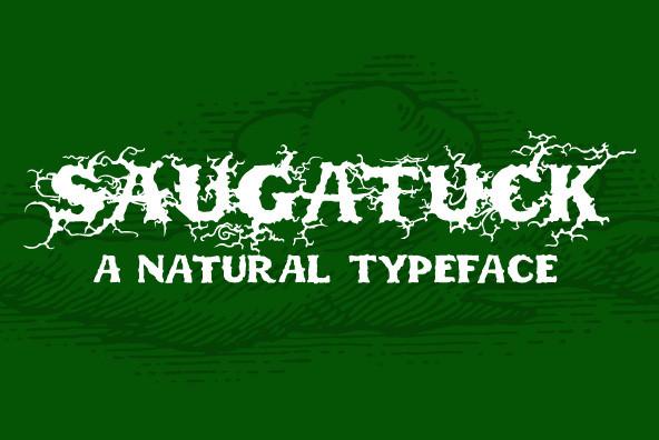 Saugatuck