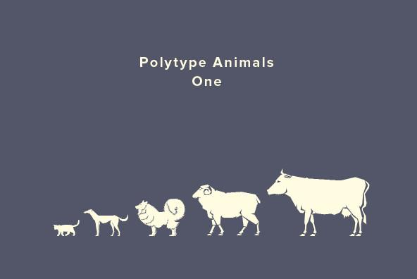 Polytype Animals One