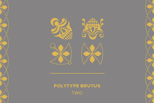 Polytype Brutus II Frames