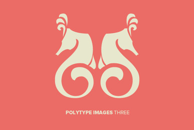 Polytype Images Three