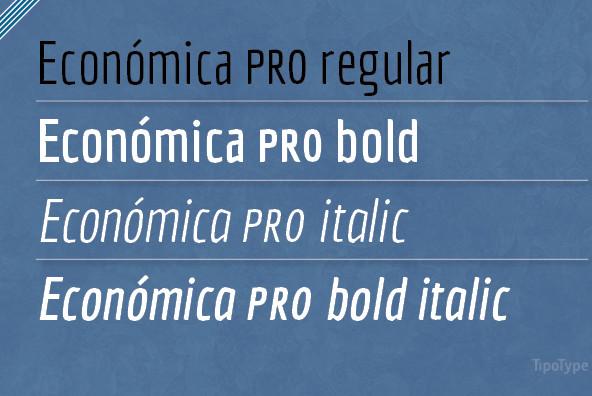 Economica Pro