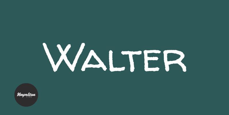 Walter Turncoat Pro