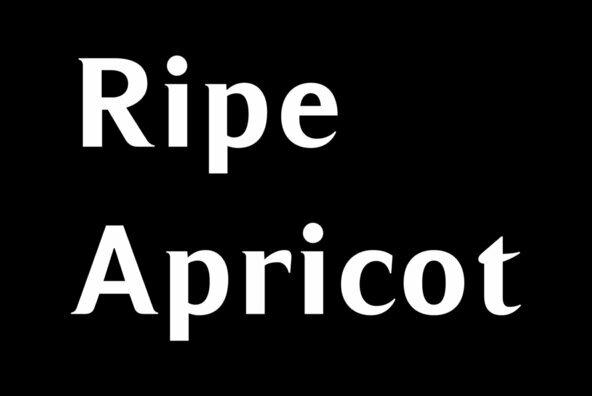 Ripe Apricot