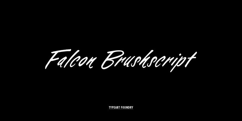 Falcon Brushcript