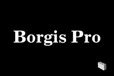 Borgis Pro