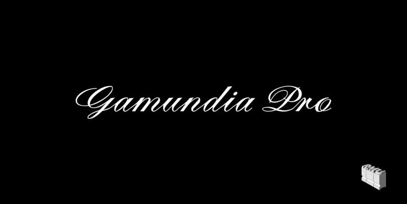 Gamundia Pro