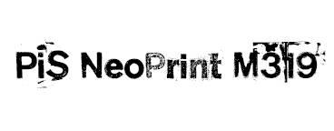 PiS NeoPrint M319