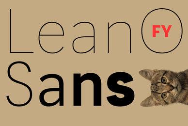LeanO Sans FY