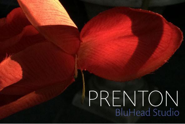 Prenton RP