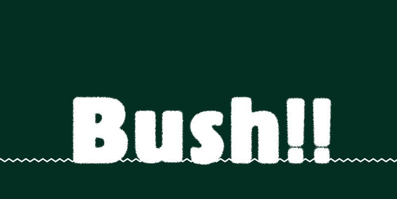 Bush!!
