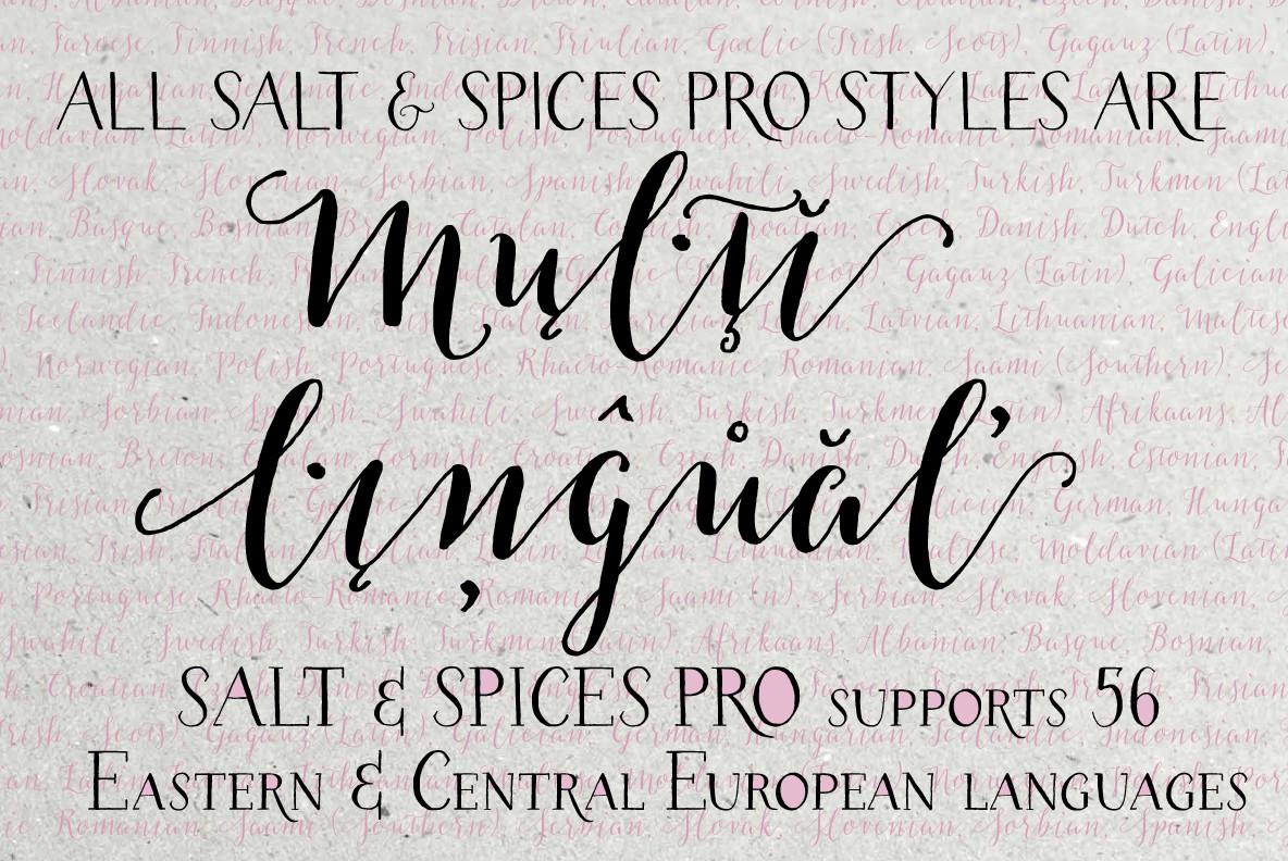 Salt   Spices Pro