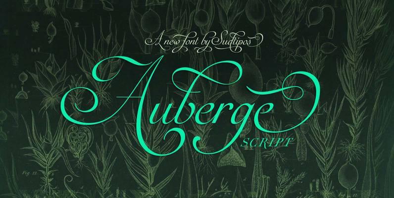 Auberge Script Pro
