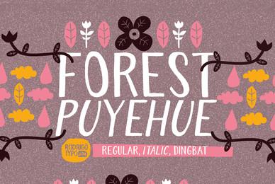 Forest Puyehue
