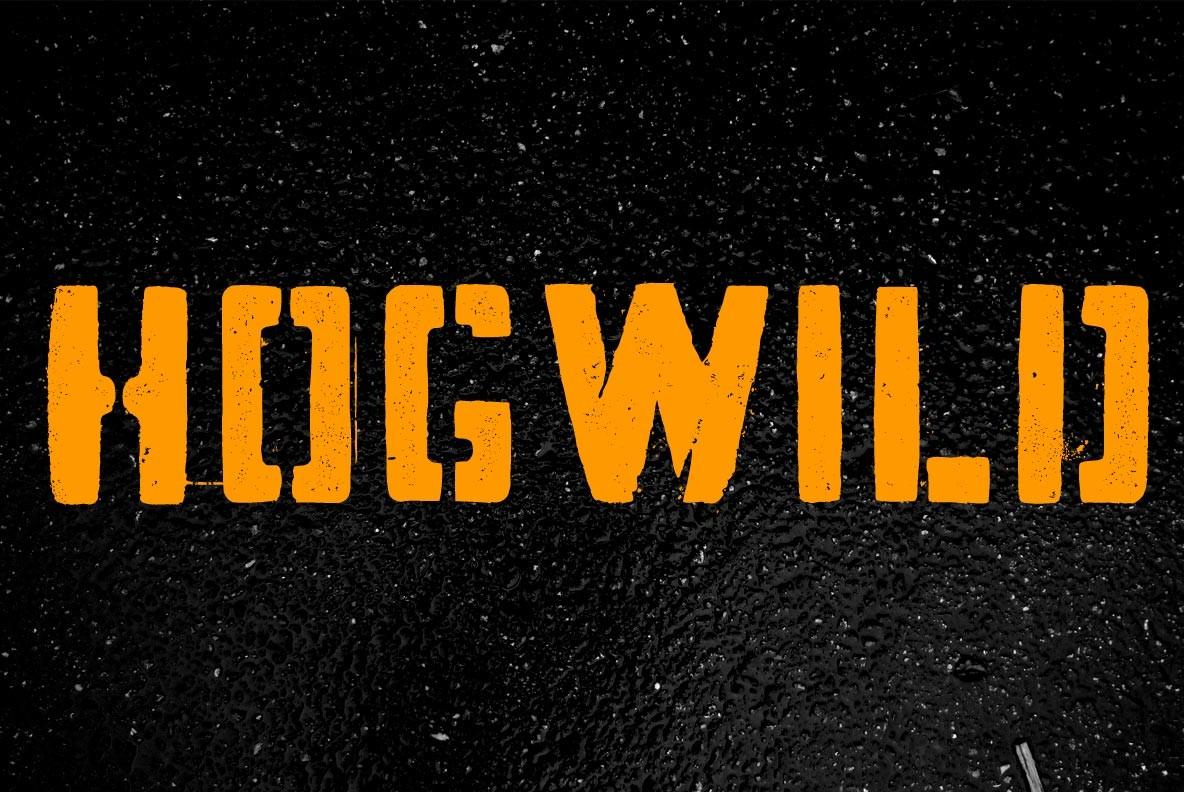 Hogwild