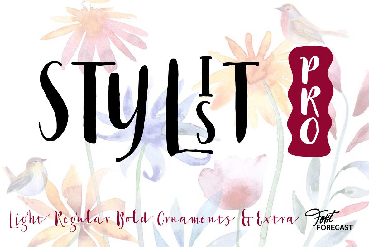 Stylist Pro