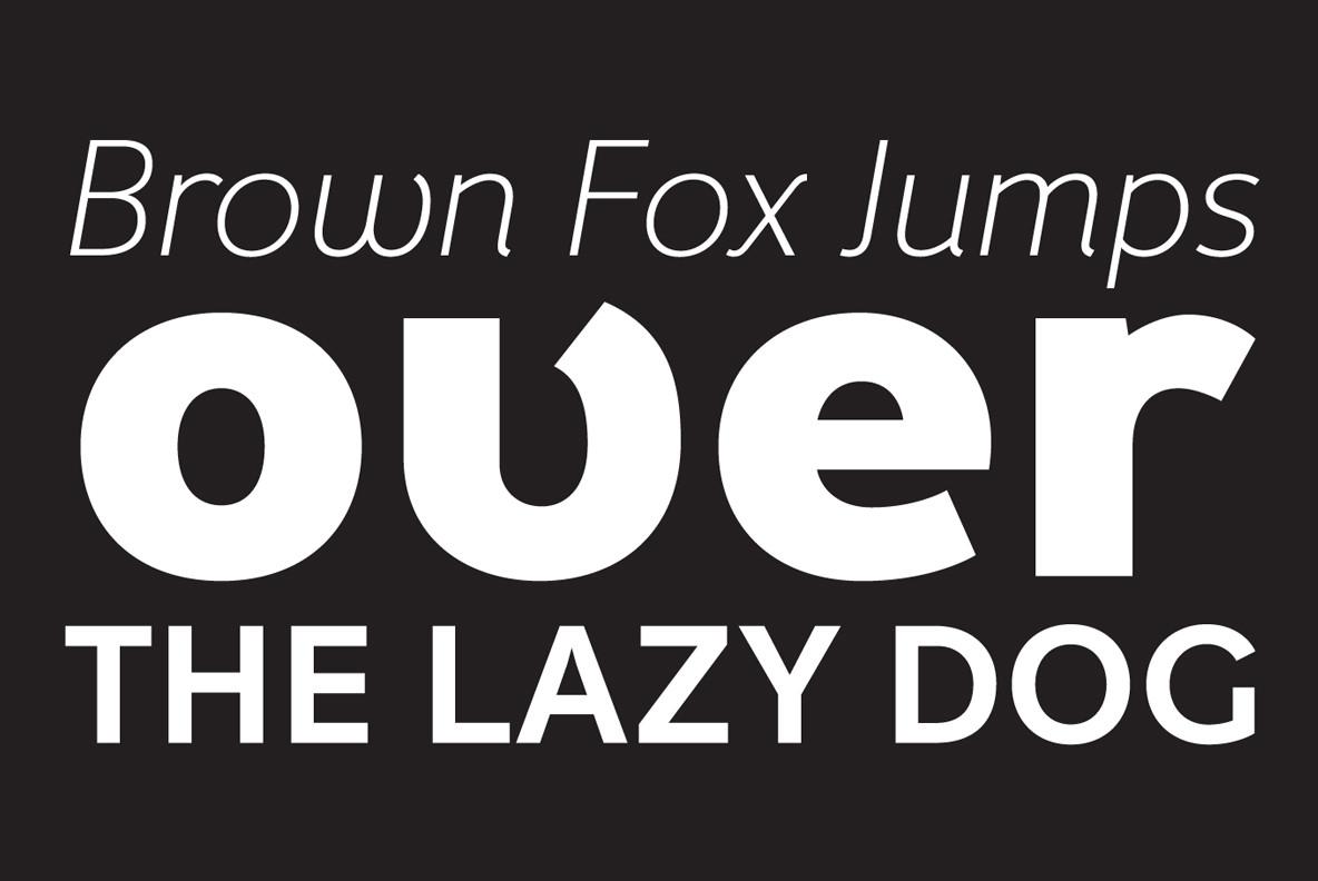 Fox Grotesque Pro