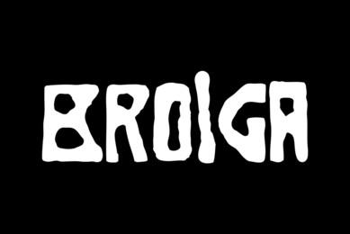 Brolga