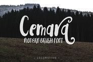 Cemara