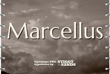 Marcellus Pro
