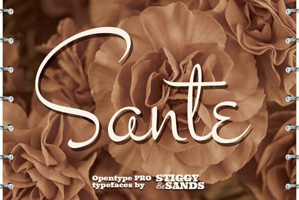 Sante Pro