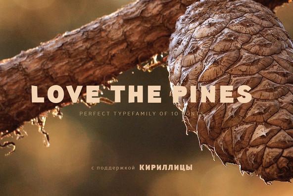 TT Pines