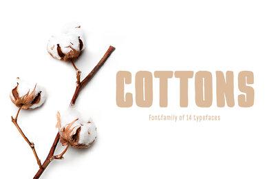 TT Cottons