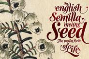 Semilla