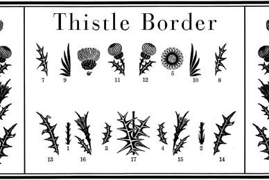 Thistle Borders