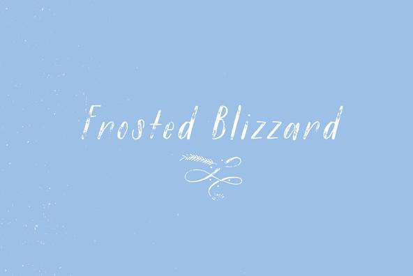 Winter Mix Blizzard