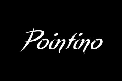 Pointino