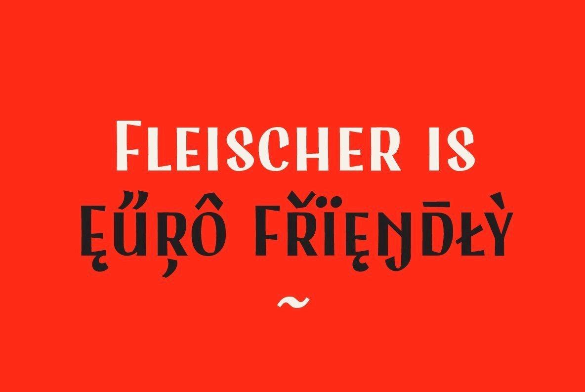 Fleischer