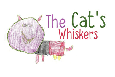 The Cat039 s Whiskers