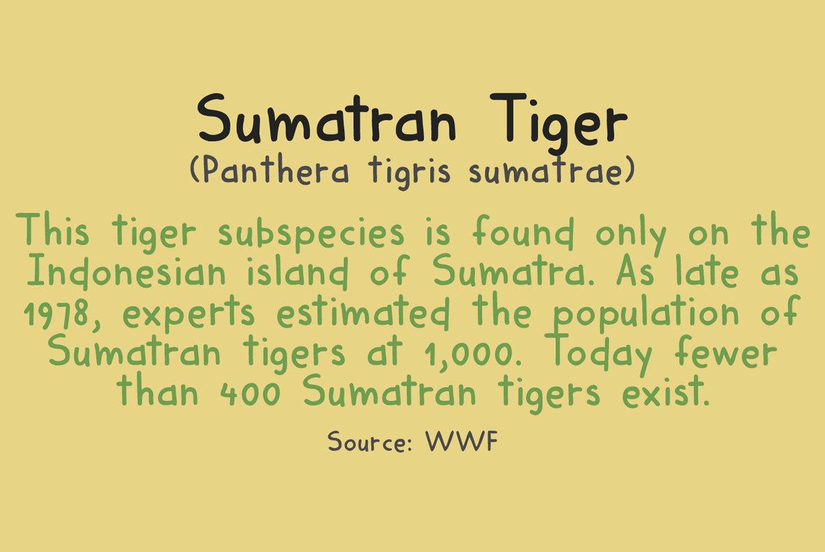 Harimau Dua