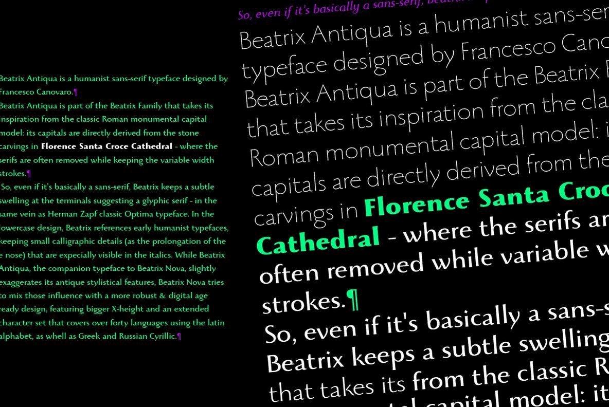 Beatrix Antiqua