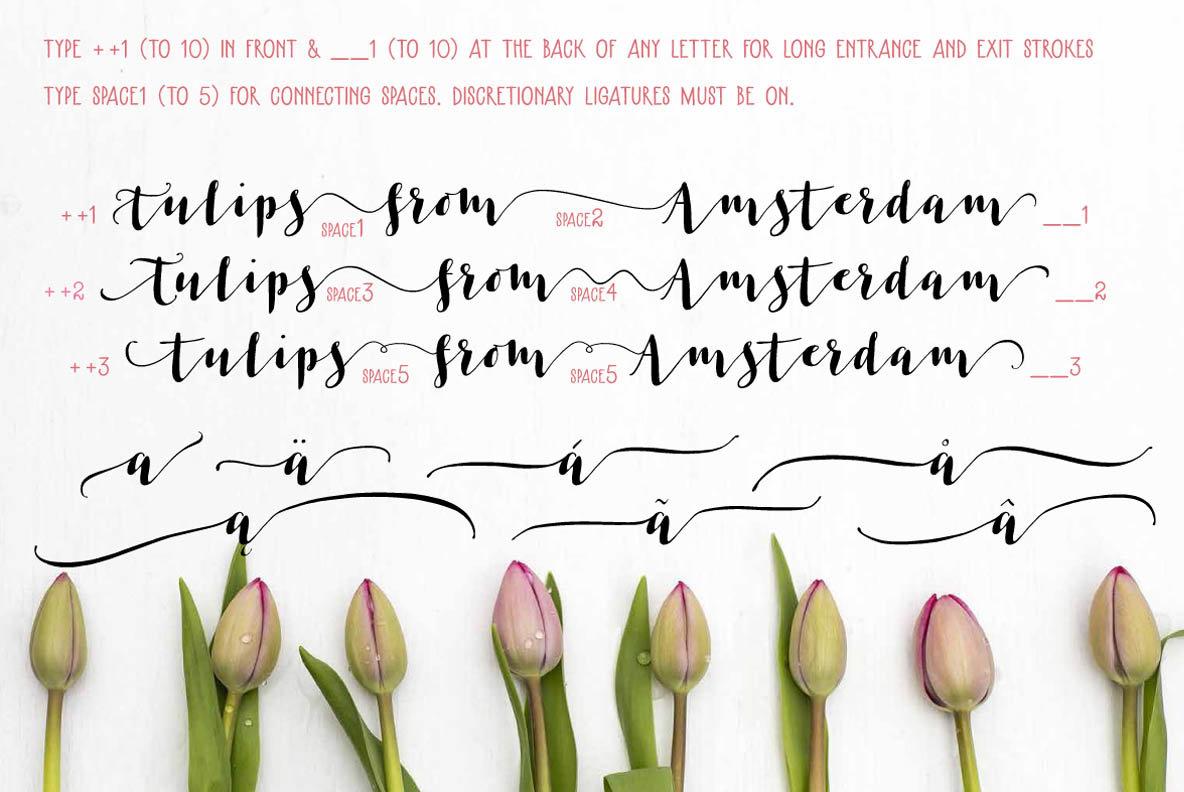 Les Tulipes Pro