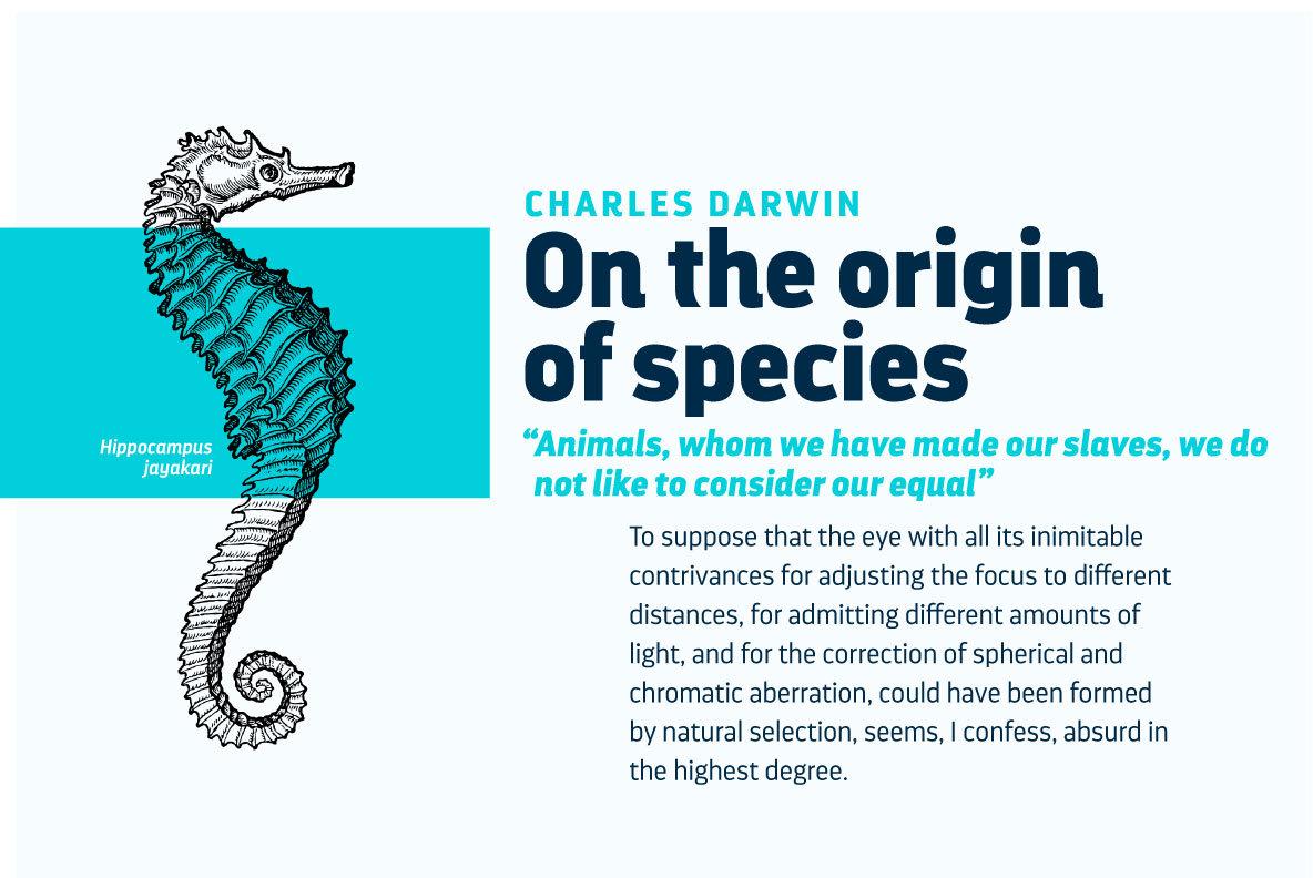 Darwin Pro