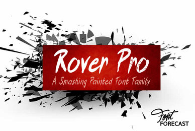 Rover Pro