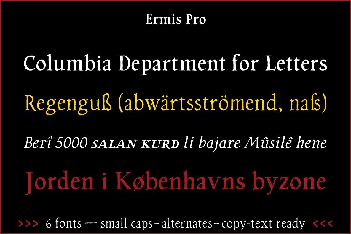 Ermis Pro