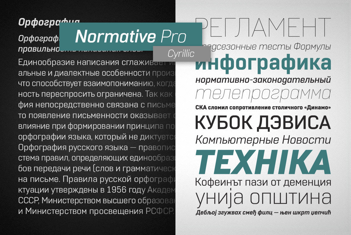 Normative Pro