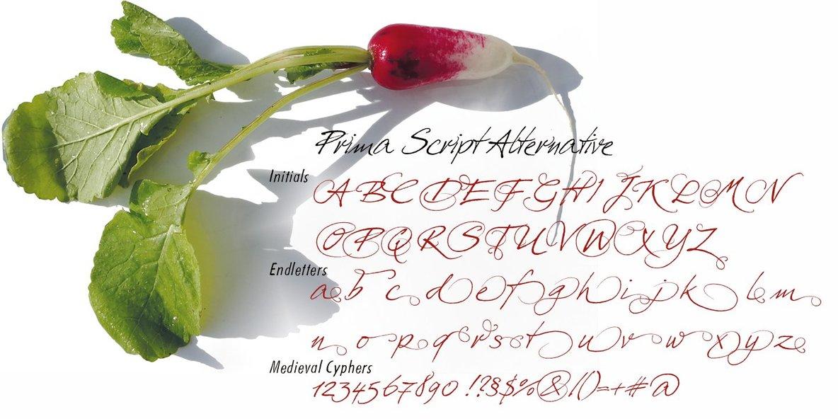 Prima Script
