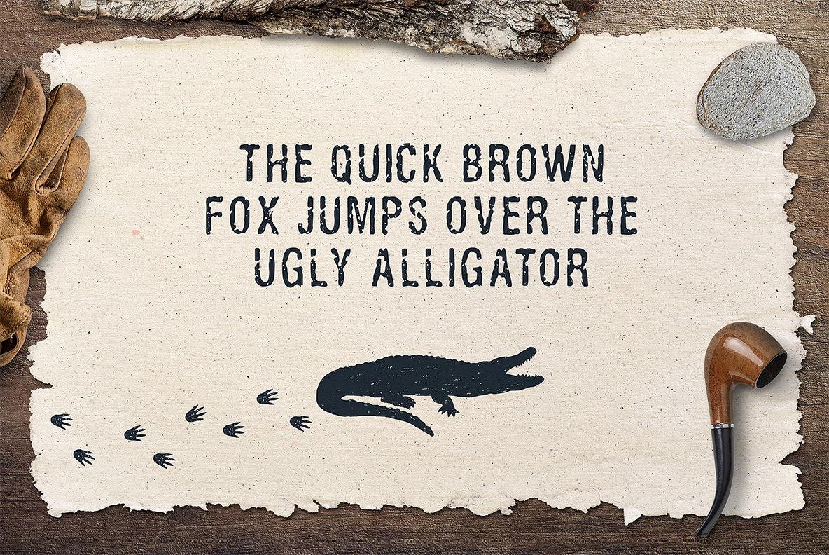 Ugly Alligator