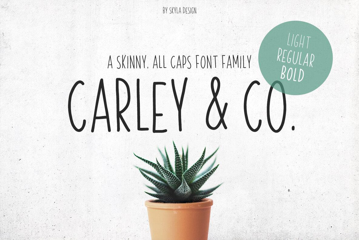 Carley   Co