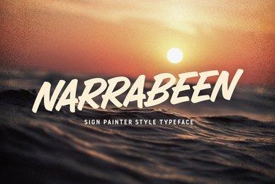 Narrabeen Brush