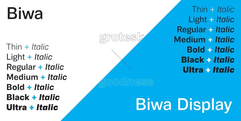 Biwa & Biwa Display